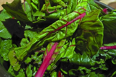 swiss chard Whats New